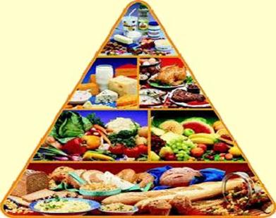 школьное питание здоровое питание